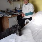 Helping your pets adapt to human absence