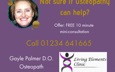 Help and Advice from Gayle Palmer