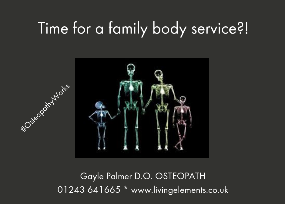 """""""MOT"""" check-up Osteopathic treatments"""