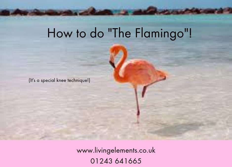 What do knees and flamingos have in common?