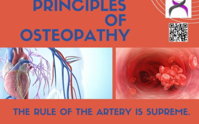 Rule of the Artery is Supreme