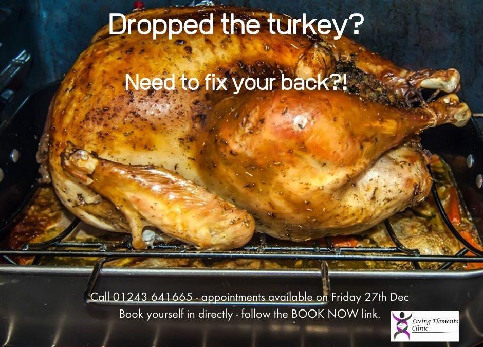 Did you drop the turkey?!