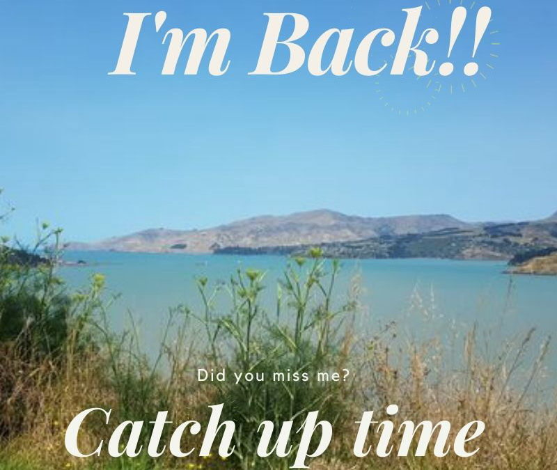 I'm Back!! Did you miss me?