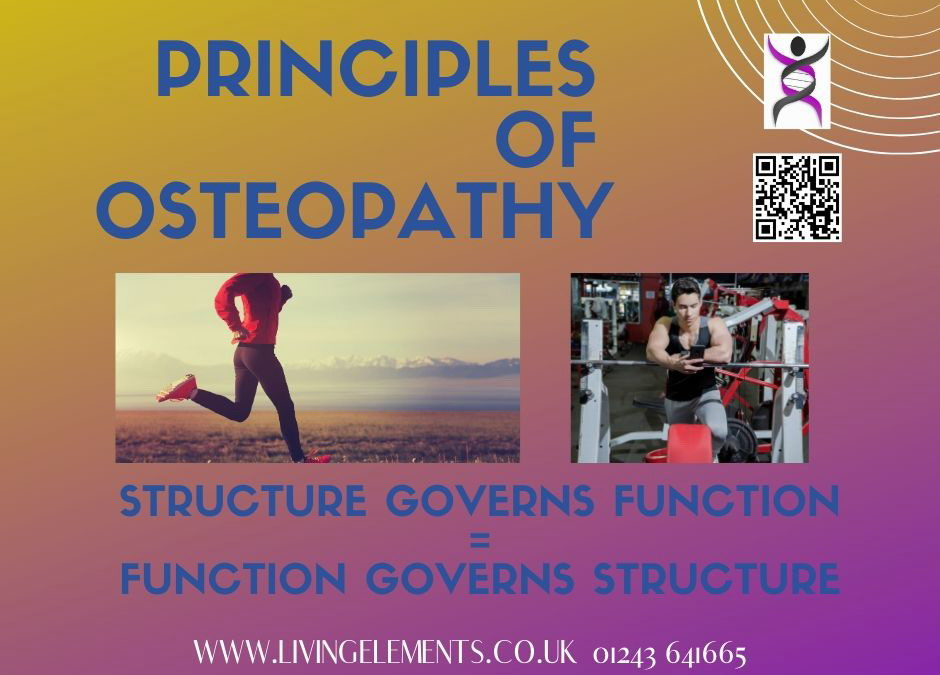 Structure and Function in Osteopathy