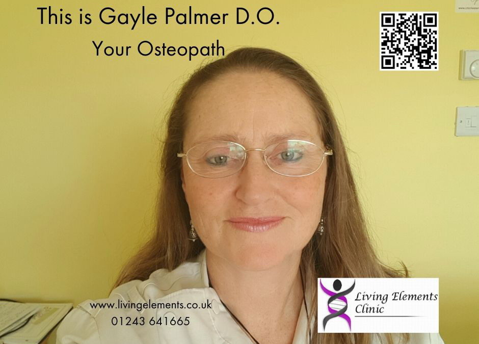 Do you know who Gayle Palmer is?
